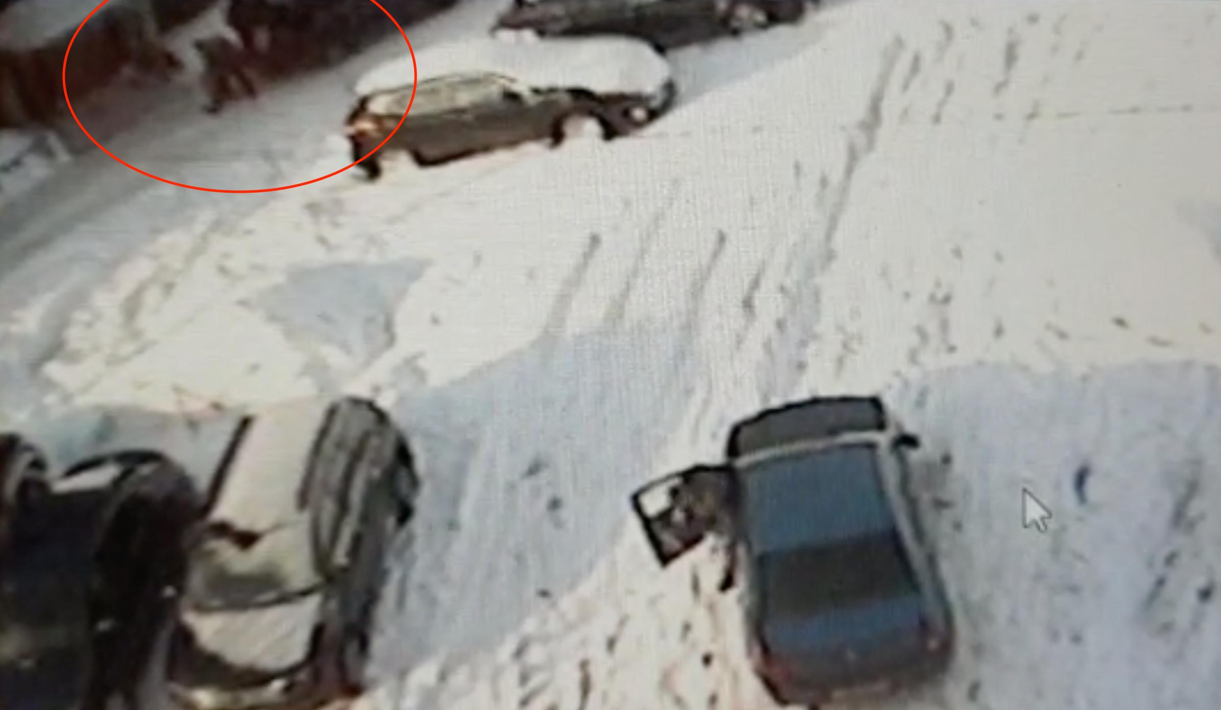 Убийство школьницы в Мурманске: Труп вывез на такси и сжег его в гаражной печи