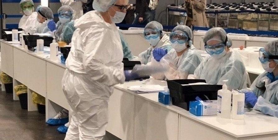 В Мурманской области за сутки выявлено 242 заболевших CoViD-19