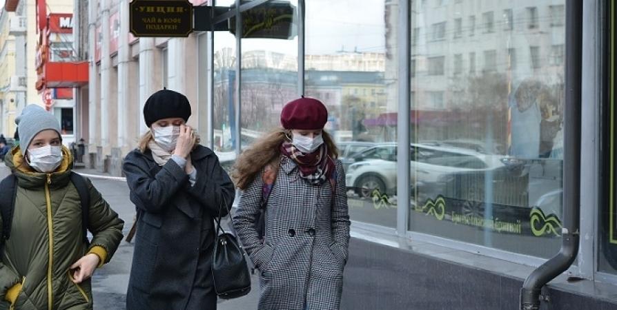 В Мурманской области 238 новых случаев заболевания CoViD-19