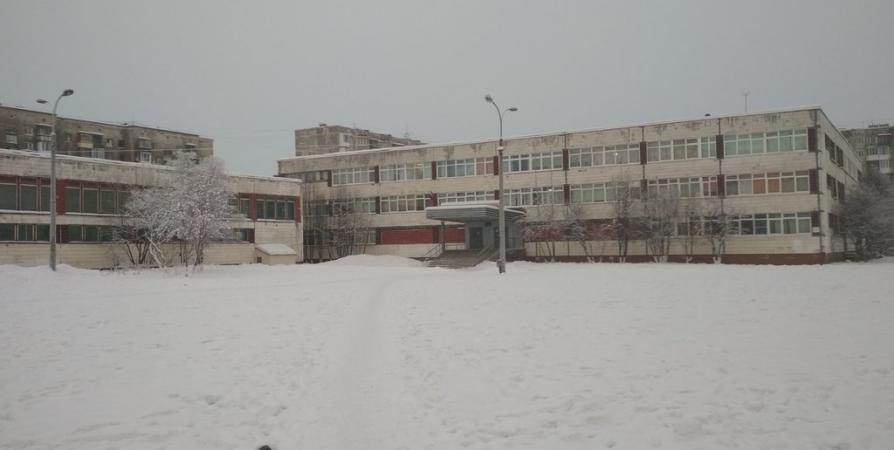 После проверки в теплице мурманской гимназии закрыли СДЭК