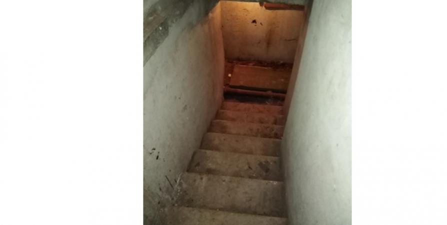 В Мурманске двое бездомных зарезали собутыльника в подвале