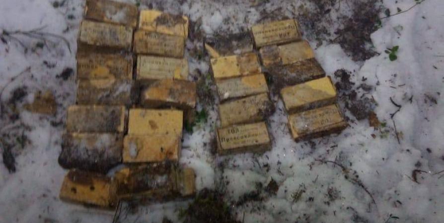 В лесу под Алакуртти нашли 24 тротиловые шашки времен войны