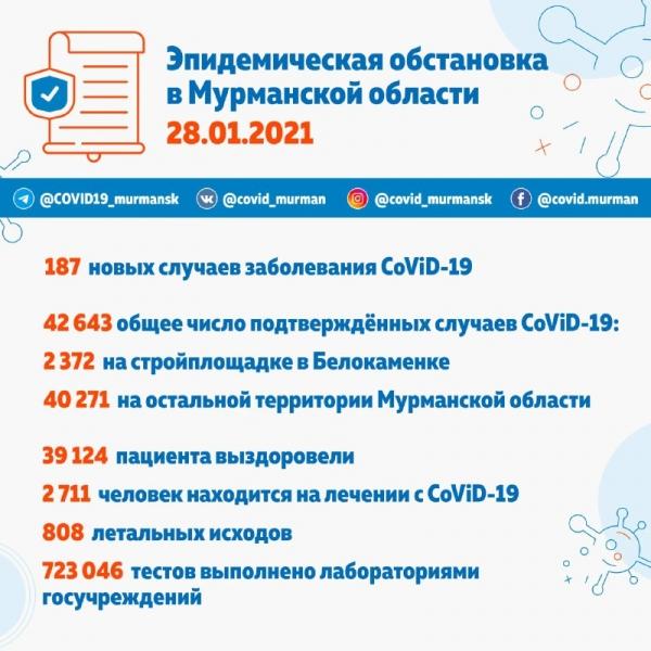 За сутки в Мурманской области 187 зараженных CoViD-19