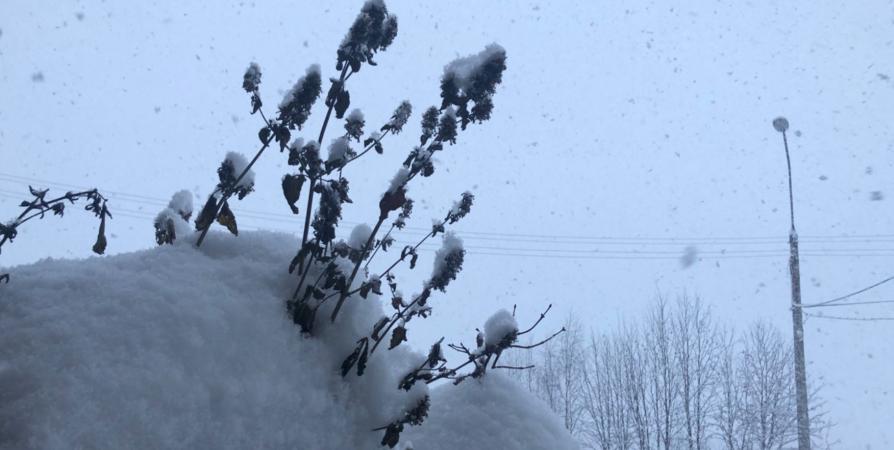 Впервые за полвека в Мурманске выпал суточный максимум снега