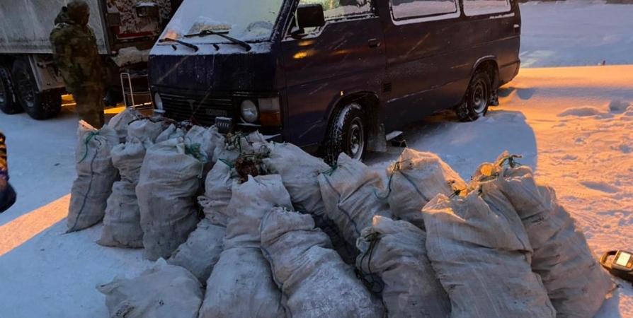 На трассе в Кильдинстрое задержали браконьеров с полтонной краба на 4 млн