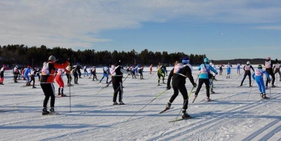 «Лыжню России» в городах Мурманской области перенесли из-за морозов