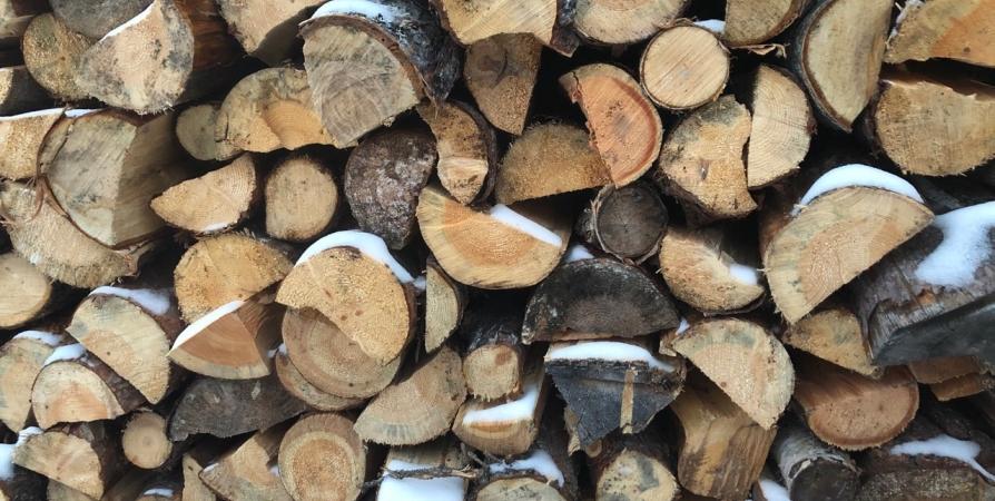 Самая низкая зарплата в 20 тысяч в Заполярье у обработчиков древесины