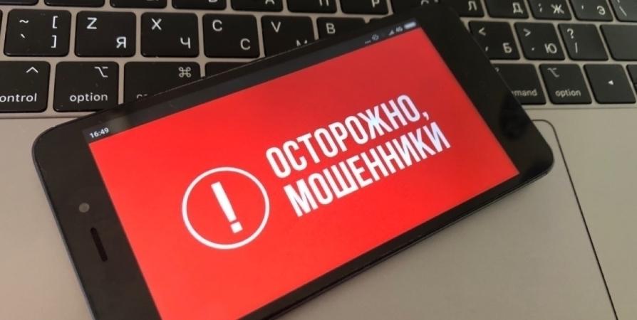 Мурманчанку и жителя Снежногорска аферисты обманули на 1,2 млн