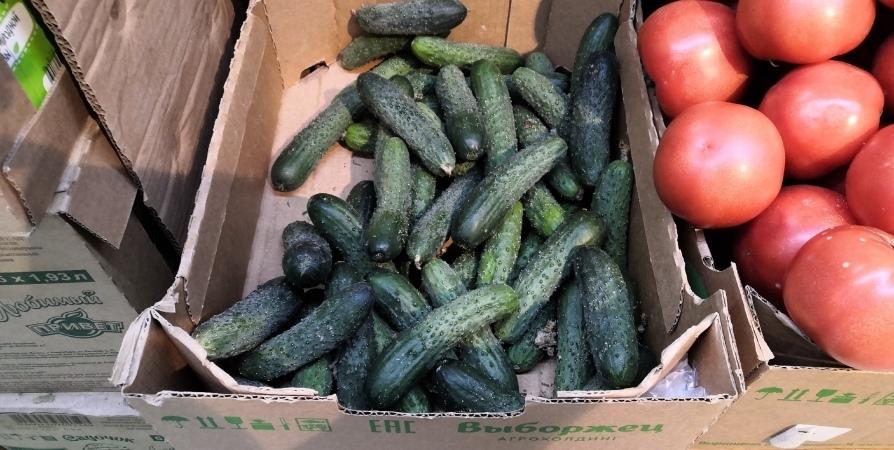 За месяц в Мурманской области на 7% подорожали овощи