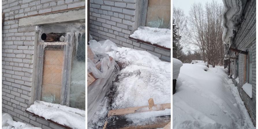 Приют для собак в Апатитах остался без отопления из-за вандалов