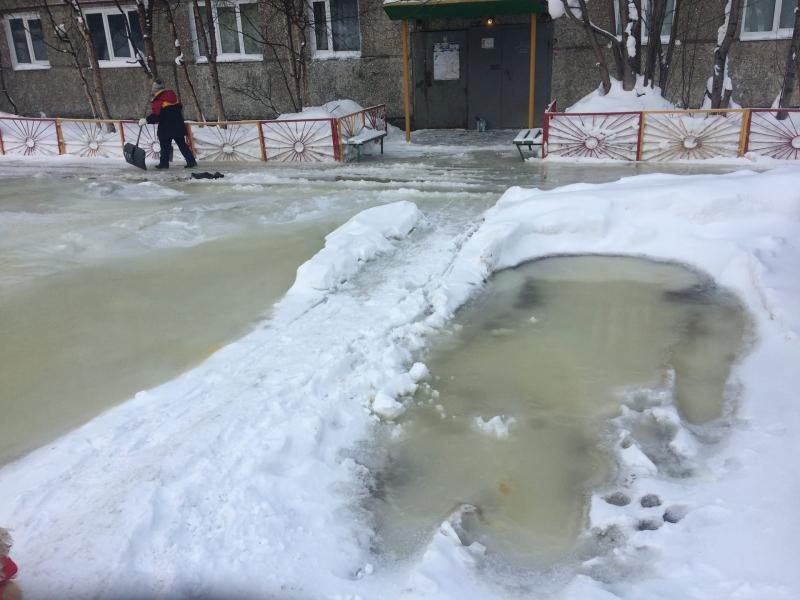Наледь покрыла придомовую территорию на Зеленой в Мурманске