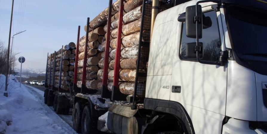 В Заполярье выявят незаконную вырубку и перевозку древесины