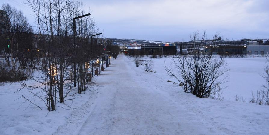 Штраф за загрязнение озера Ледового в Мурманске заплатит АЗС