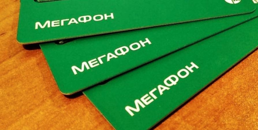 МегаФон стал частью Арктического экономического совета