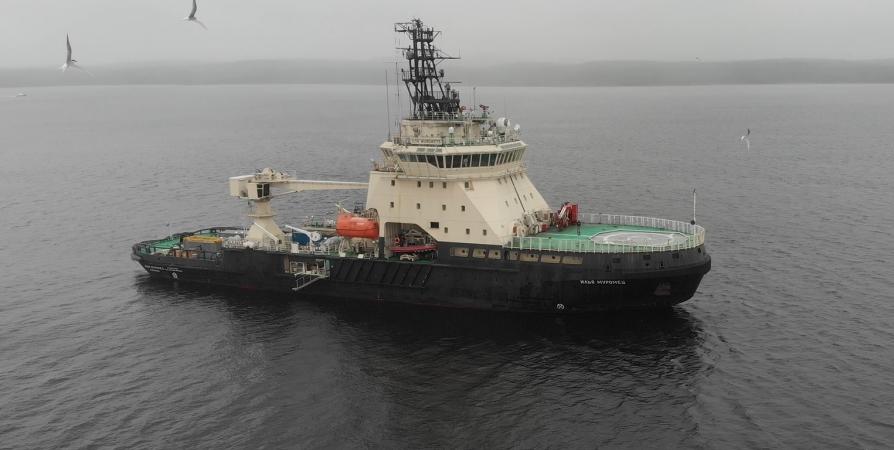 На дне Баренцева моря экспедиция ищет погибшие в годы войны корабли