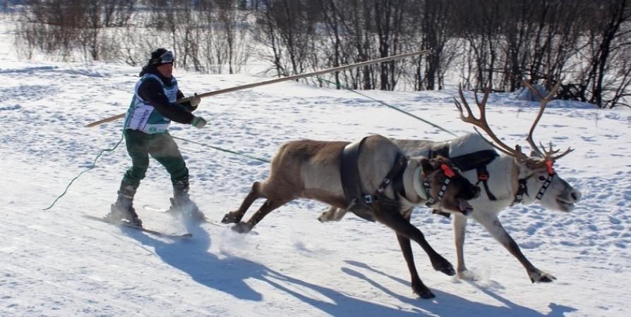 В Мурманске расскажут о программе 86-го Праздника Севера