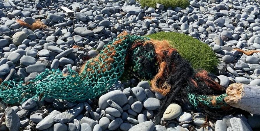 В Мурманске обсудили проблему мусора в Баренцевом море