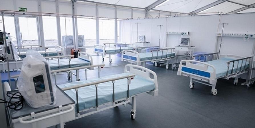 Для ковид-пациентов в Мурманской области функционируют 818 коек
