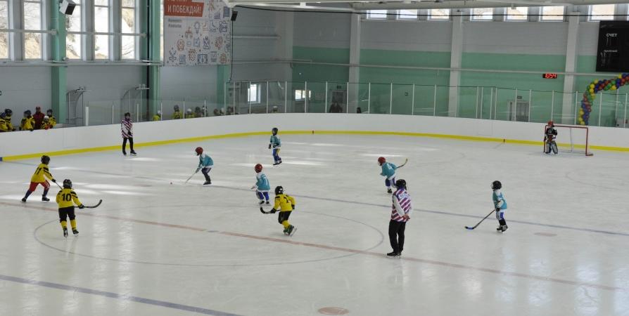 На мурманской ледовой арене «Метеор» соревновались по хоккею с мячом
