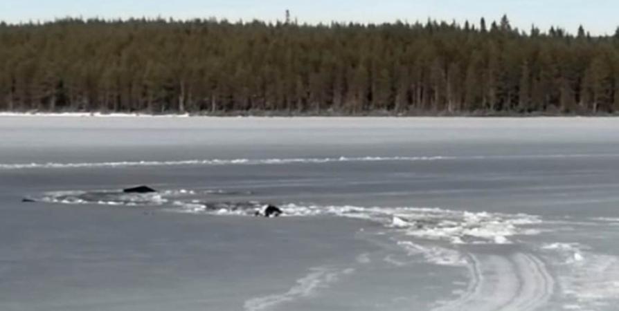 О трагедии на реке Канда: Рыбак руками разламывал лед и плыл к берегу