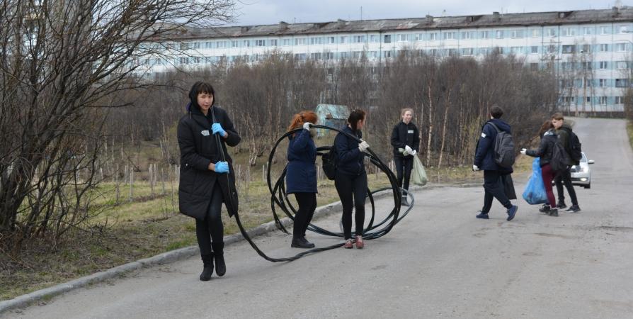 На Всероссийском субботнике северяне займутся сортировкой отходов