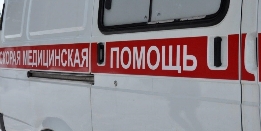 По дороге на Тулому в ДТП погибли два пассажира