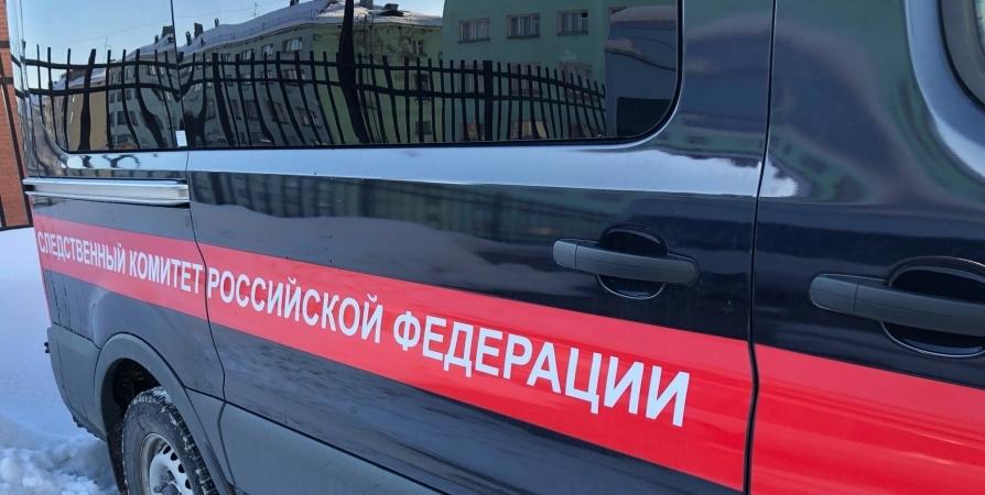 Бастрыкин лично контролирует дело о нападении собак на ребенка в Мурманске