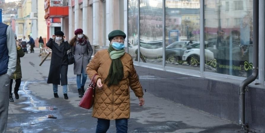 В Госдуме предложили пособие для пенсионеров на средства защиты при CoViD-19
