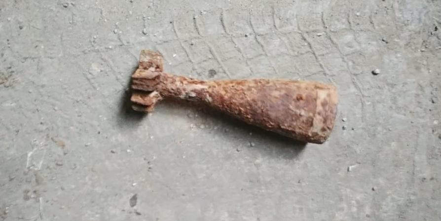 В лесу Колы нашли минометную мину времен войны