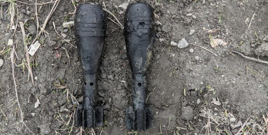 В районе Ледового в Мурманске нашли мины