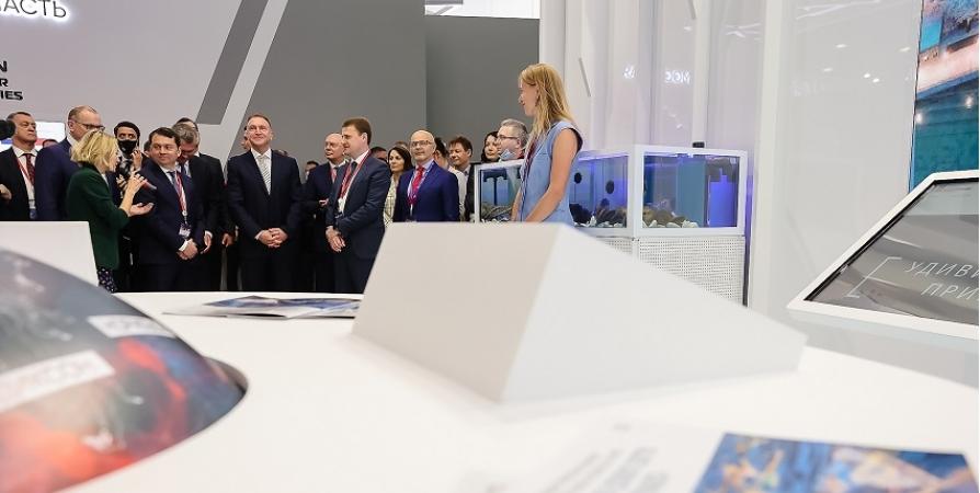Проект «Новый Мурманск» губернатор презентовал на международном форуме в СПб