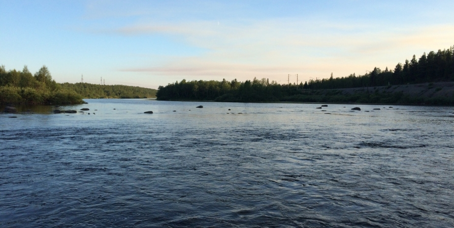 На юге Кольского полуострова в первые летние выходные до +25°