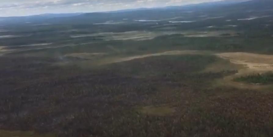 Режим повышенной готовности введен в Мурманской области из-за пожароопасности лесов